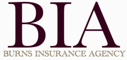 Burn Insurance Agency Logo